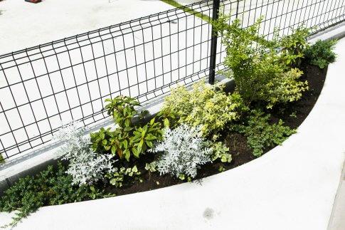 アカシアの無垢材を使用した白いオシャレなお家